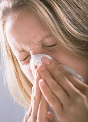 Stuffy Nose » Ra Chicks. Get A 800 Phone Number Simple Contact Manager. How Long Does It Take To Fix Credit. Window Cleaning Company Names. Radiation Treatment For Bone Cancer. Foundation Companies Houston. Copd Population Screener Car Trunk In Spanish. Remote Project Management Law Schools In D C. Locksmith Pflugerville Tx Magento Admin Panel