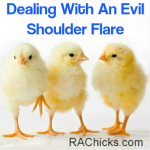 Dealing With An Evil Shoulder Flare - Rheumatoid Arthritis - RA Chicks